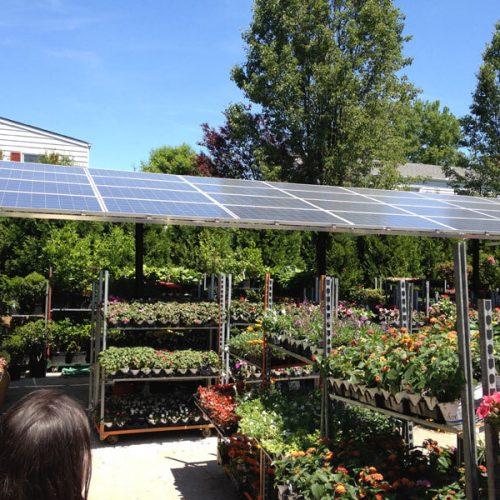 Điện năng lượng mặt trời có thể kinh doanh